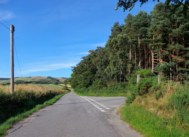 Road junction by Marywell Copse