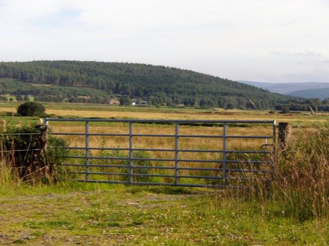 A 7-bar steel field gate