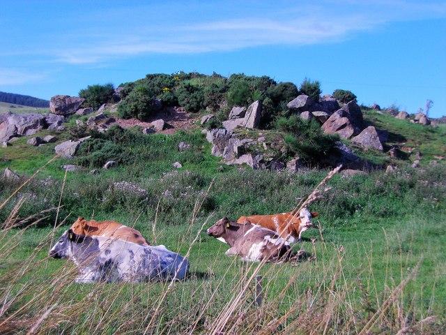 A rock pile near Cairn-na-Shin