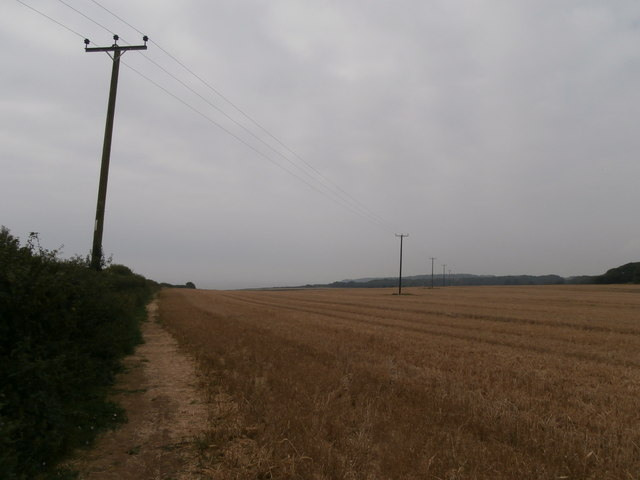 Telegraph poles crossing a field of stubble