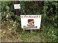 TQ4065 : Petts Wood Football Club sign by Adrian Cable