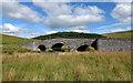 NT4443 : Lugate Bridge by Mary and Angus Hogg
