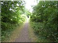 ST0617 : Former railway route to Burlescombe by David Smith