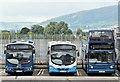 J3373 : Gt Victoria Street bus depot, Belfast (August 2016) by Albert Bridge