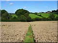 SK1342 : Field path on the line of Deepdale Lane by Ian Calderwood
