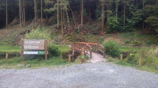 Kilbrittain forest picnic area