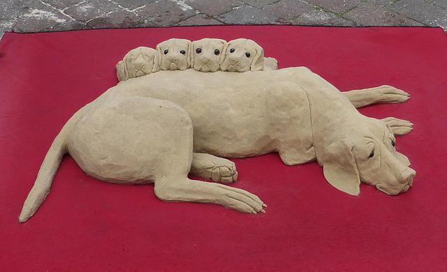 A street artist's sand sculpture in Galashiels