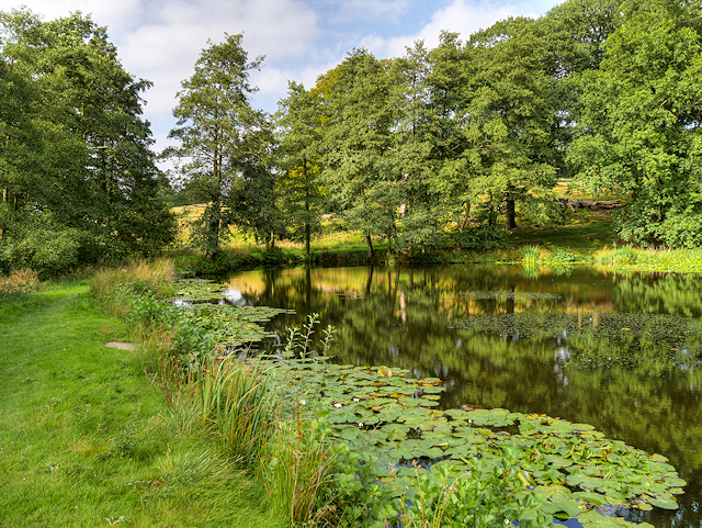 Row Pond, Hardwick Hall
