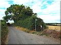 TQ4864 : Skibbs Lane, near Chelsfield by Malc McDonald