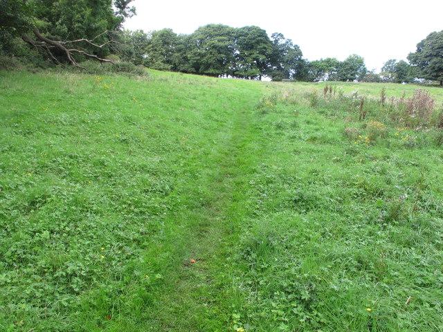 Public footpath across pasture, Bellasis, Durham