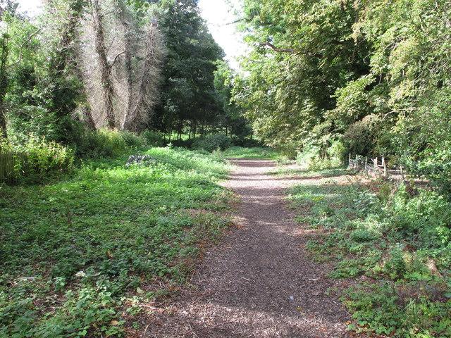 Public footpath up from Quarryheads Lane, Durham