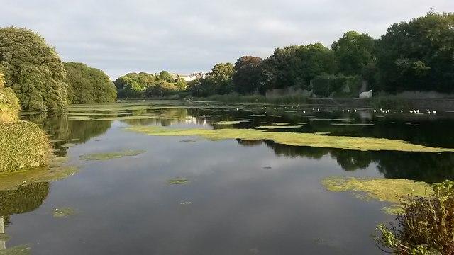 The Mill Pond, Pembroke