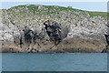 SS1197 : St Margaret's Island by Alan Hunt