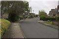 SE1526 : Silver Birch Avenue, Wyke by Mark Anderson