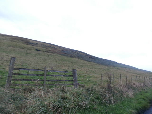 Below Adinston Hill