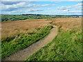 SE0236 : Footpath on Penistone Hill, Haworth by Humphrey Bolton