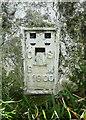 SE0236 : Flush bracket bench mark on triangulation pillar, Penistone Hill Haworth by Humphrey Bolton