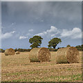 R8499 : Straw bales in a field by David P Howard