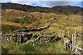 NN2410 : Sheepfold and field dyke in Glen Kinglas : Week 40