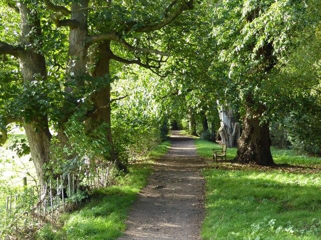 Wooded path to Baddesley Clinton church