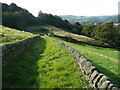 SE0225 : Hebden Royd FP55 (7) - The western branch on a broad grass track, Mytholmroad by Humphrey Bolton