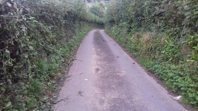 Lane at Tyn-y-Caeau