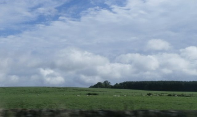 Farmland by the A68