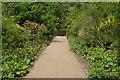 TQ6039 : Footpath, Dunorlan Park by N Chadwick