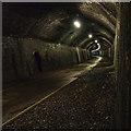 SK1273 : Chee Tor Tunnel : Week 41
