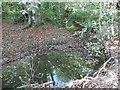 TQ2493 : Folly Brook below Darland's Lake by Marathon