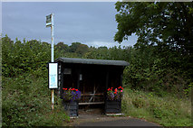 SU9395 : Winchmore Hill bus shelter with flowers by Robert Eva