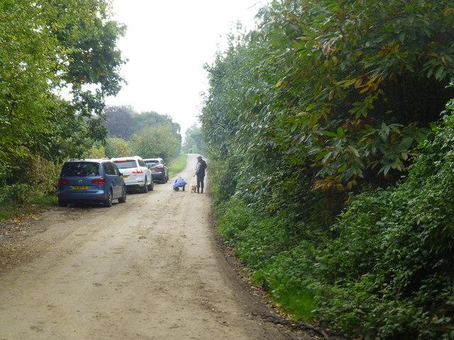 Kent Walks Teston Park To Teapot Island