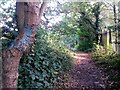 SZ1094 : Strouden: graffitied tree on footpath K05 by Chris Downer