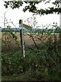 TM1888 : Carpenter's Walk Bridleway sign by Adrian Cable