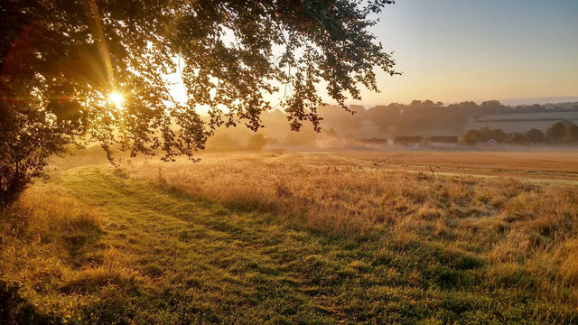 Early morning, Upton Grey