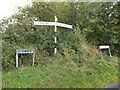TM1791 : Signpost & Hall Lane & Sallow Lane signs by Adrian Cable