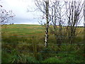 H3872 : Cloghog Upper Townland by Kenneth  Allen