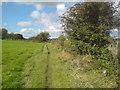 SE2431 : Footpath near Farnley and Park Side Farm by Schlosser67
