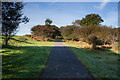 SX5168 : Drake's Trail by Guy Wareham