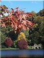 ST7733 : Stourton: autumnal colours at Stourhead : Week 42