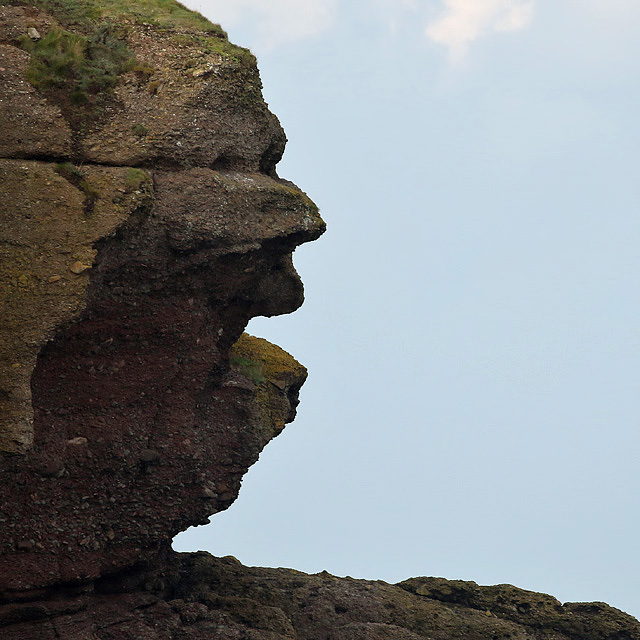 A rock face at Eyemouth Point