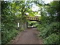 SO8797 : Railway walk approaching Windmill Lane bridge by Richard Vince