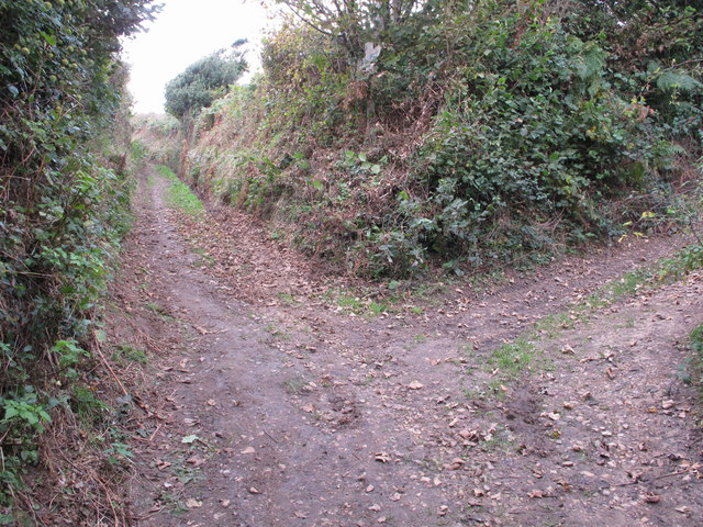 Track junction by Langdon Hill