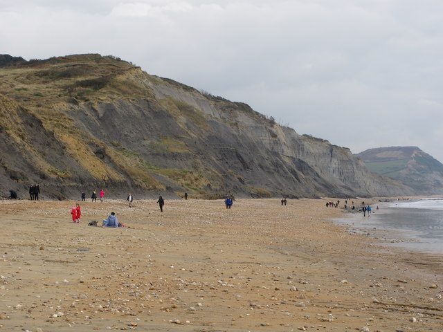 Charmouth beach with fossil hunters
