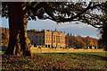 SK2570 : Chatsworth House in golden autumn sunshine by Andy Stephenson