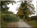 SJ8964 : Peover Lane by Graham Hogg