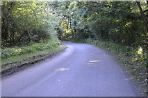 TQ3326 : Copyhold Lane by N Chadwick