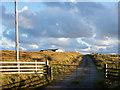 NR3144 : Farm access road by Trevor Littlewood