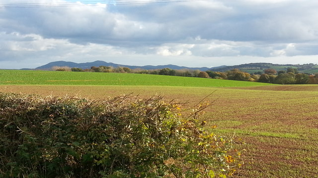Fields at Linley Green