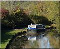 SK3801 : Narrowboat moored on the Ashby Canal : Week 44